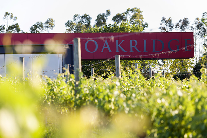 The red sign of the Oakridge winery in the Yarra Valley, shot through a foreground of the winery's vines - Oakridge has an excellent kitchen that's worth checking out on any Yarra Valley day trip