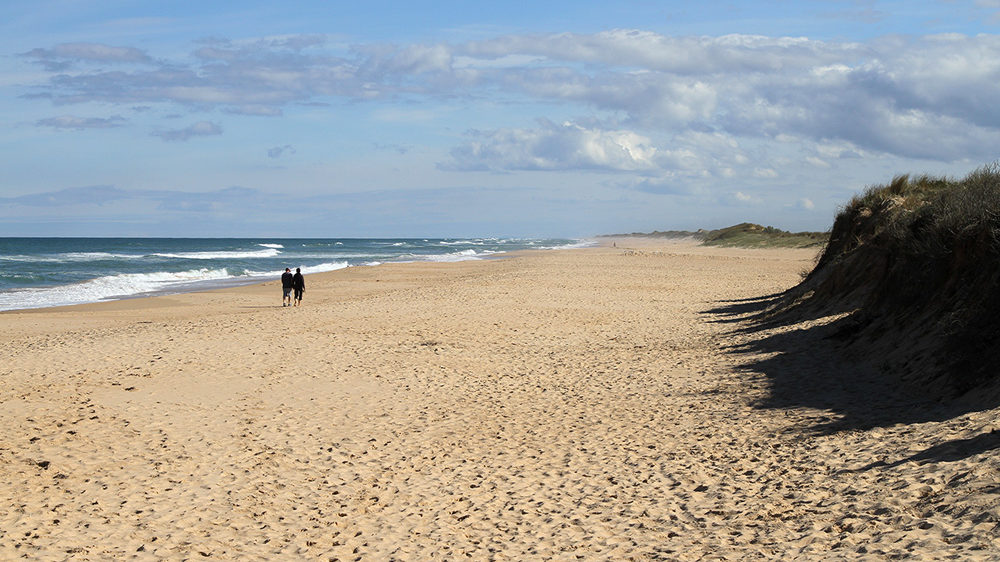 A south east view along 90 Mile Beach in Victoria where there are dog friendly camping spots