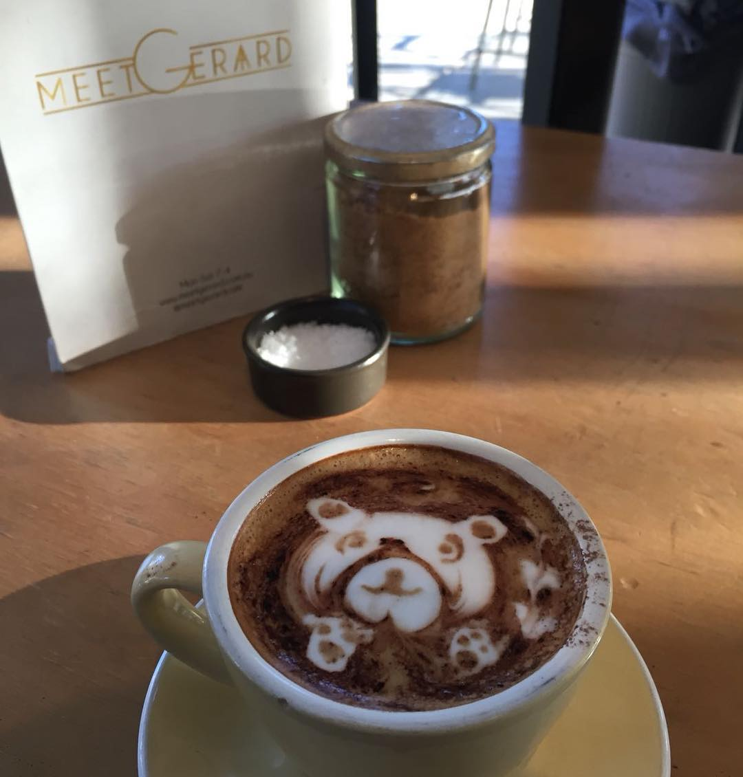 Cute teddy bear coffee art on a coffee at Meet Gerard cafe, one of the best cafes in Sydney according to GoGet members