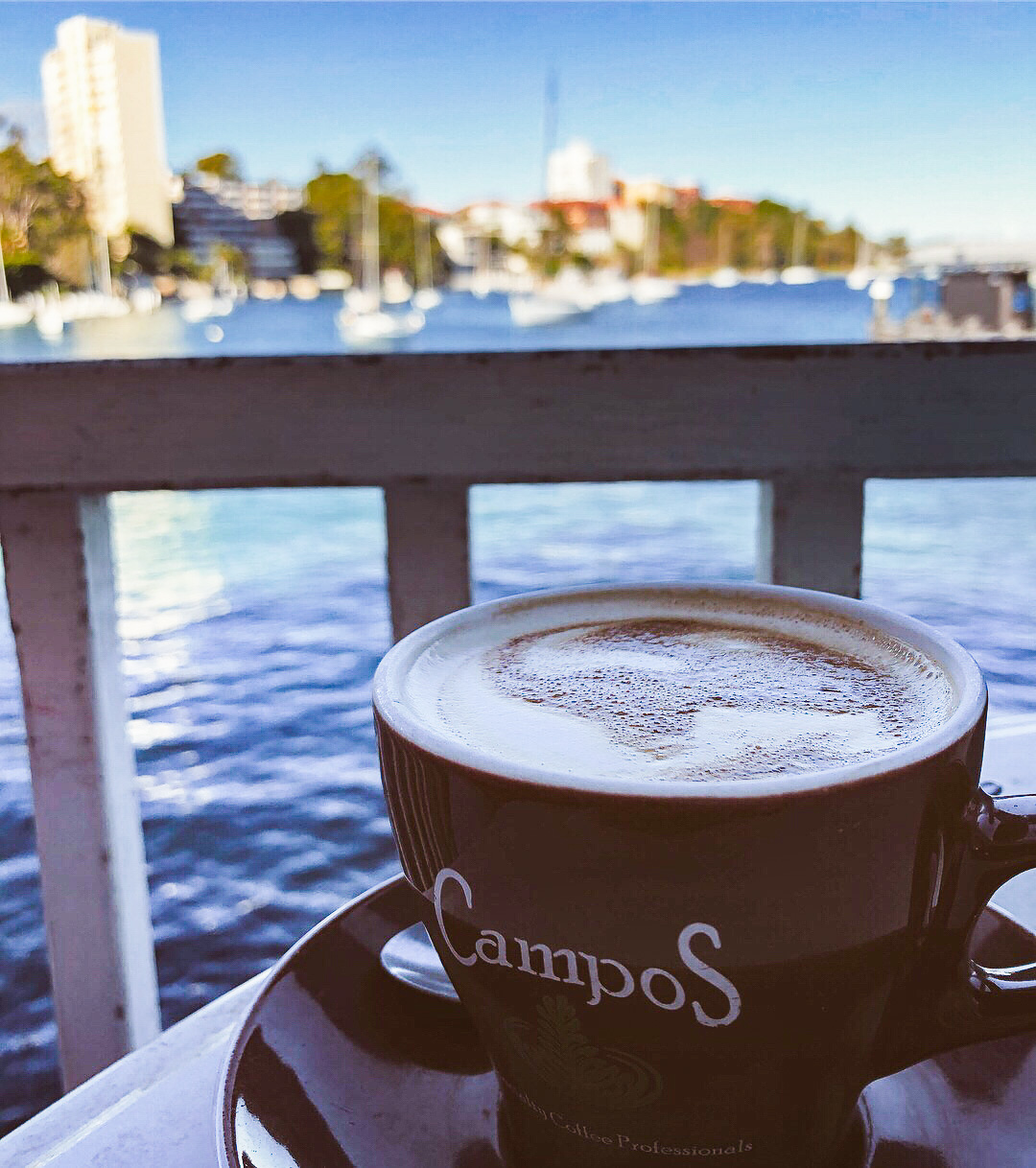 A cup of Campos coffee with a view over Sydney Harbour in the background from Thelma and Louise cafe in Neutral Bay