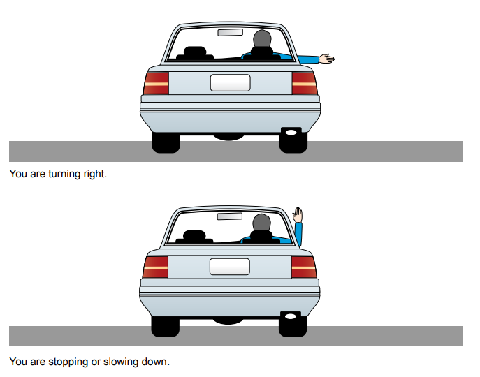 A diagram demonstrating how to indicate with your hand if your car is turning right, or stopping
