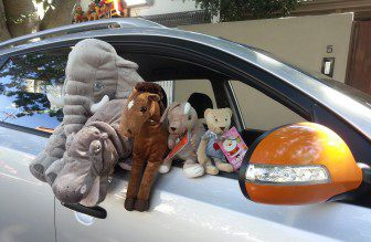 Toys in cars 1 cropped