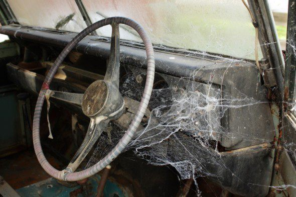 spider web cars
